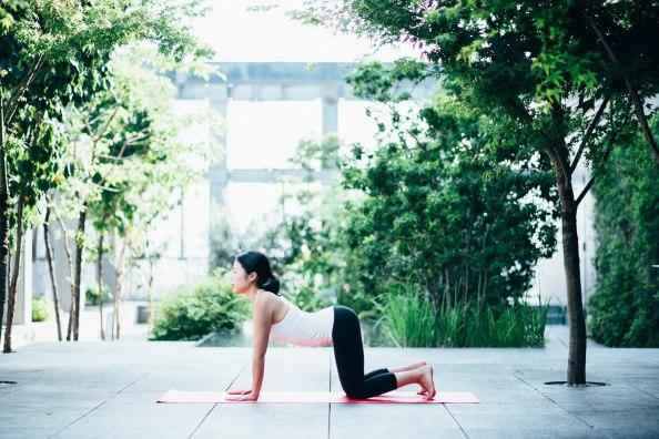 shiseido_yoga-6