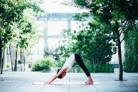 shiseido_yoga-8